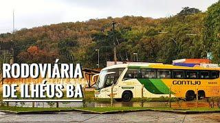 Viação  gontijo chegando para fazer embarque na cidade de Ilhéus na Bahia