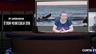 CURTA - PROGRAMA - É TEMPO DE COLHEITA