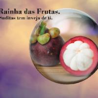 Eduarte Fernandes farias