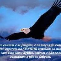 Arlindo Mendes